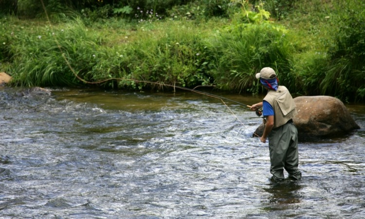 Man fly fishing on river