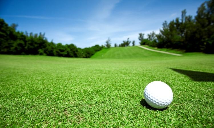 Closeup of golfball on green grass