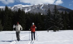 Couple nordic skiing on mountain