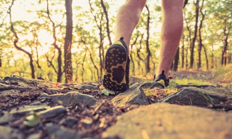 Closeup of feet walking through forest trail