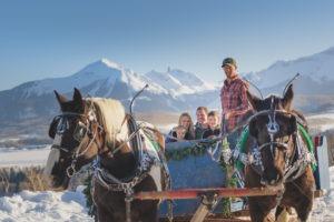 Sleigh Rides & Horseback Riding